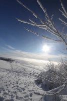 2010 Wasserkuppe Inversion Winter Wolken 019