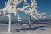 Wasserkuppe-Winter-2016-1343