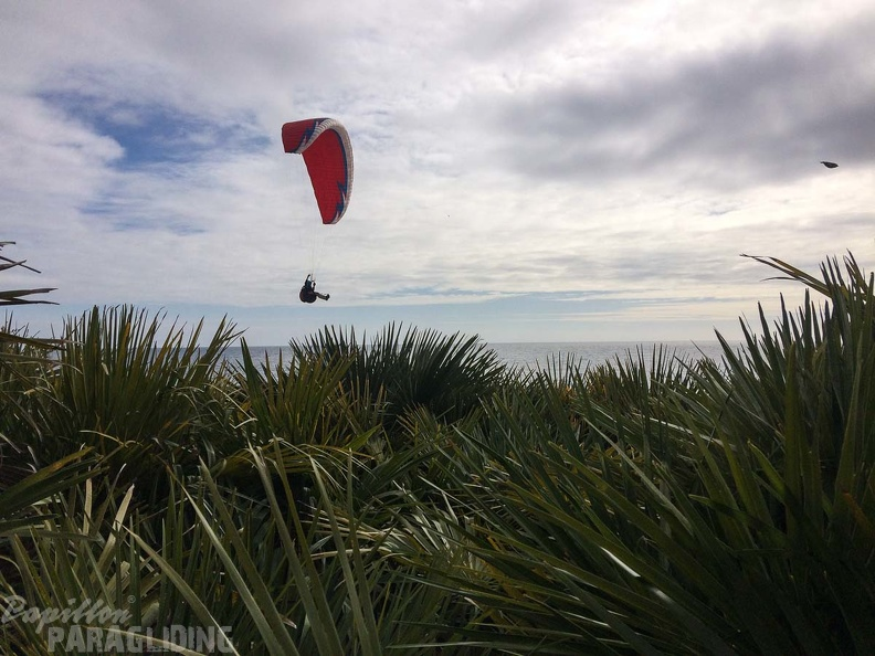 Portugal-Paragliding-2018 01-208